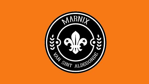 Marnix van Sint Aldegonde